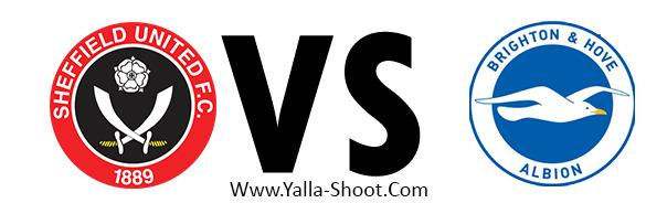 brighton-vs-sheffield