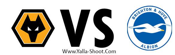 brighton-vs-wolverhampton