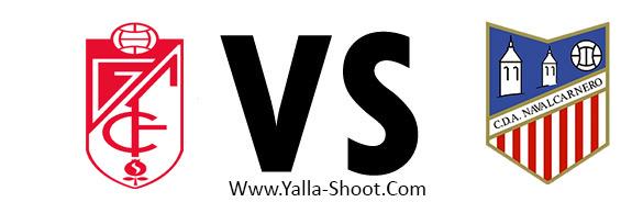 cda-navalcarnero-vs-granada