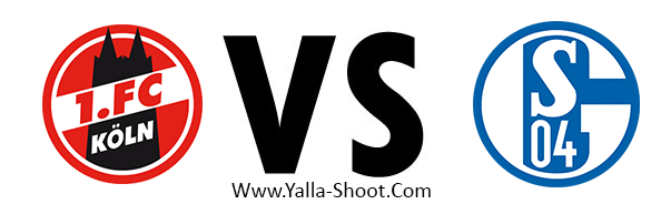 schalke-vs-koln